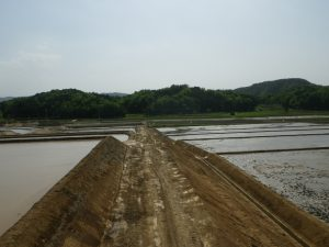 平成28年度府営農業競争力強化基盤整備事業女布地区ほ場整備工事その2-2